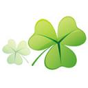 clover win10版 v3.3.2 官方中文版