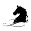 黑马会计考试题库 v2.0 官方版