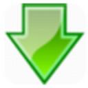 多线程极速下载器 v1.0 官方版