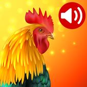 动物:手机铃声---安卓手机下载